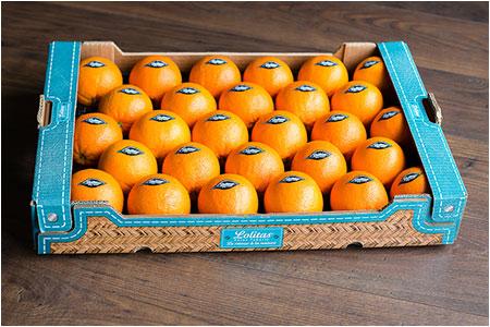 Bienvenue sur le site internet lolitas sp cialiste des agrumes non trait es et jus d 39 orange - Machine a orange pressee ...